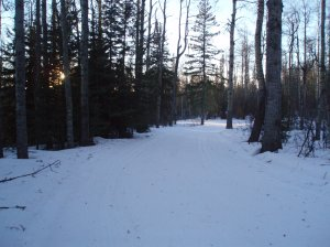 ski and skate trails