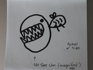 no-see-um drawing