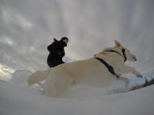 snow running