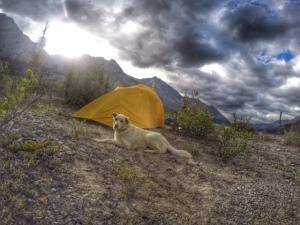 Wokkpash campsite